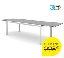 Table de Jardin Aluminium Verre 12 Personnes Extensible L 220 à 340 c